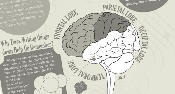 How Does Writing Affect Your Brain? (Infographic) | Third Monk image 2