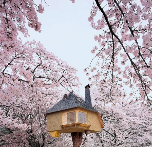 Beautiful Treehouses From Around the World (Photo Gallery, Video)   Third Monk image 13