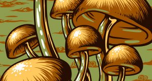DJ Mark Farina - Mushroom Jazz (KJ Song Rec) | Third Monk image 4