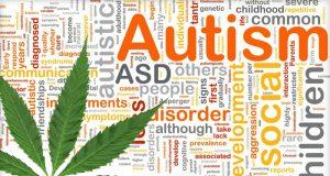 Marijuana May Relieve the Symptoms of Autism (Study) | Third Monk image 1