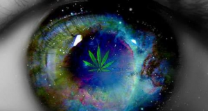 Cannabis Prevents Loss of Vision, Blindness (Study) | Third Monk image 1