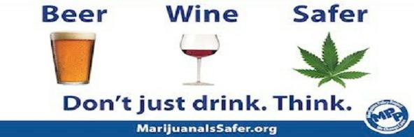 Alcohol vs Cannabis - No Contest (Video) | Third Monk image 4