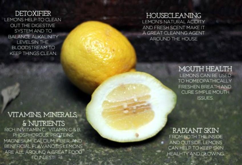 45 Amazing Uses for Lemons   Third Monk image 1