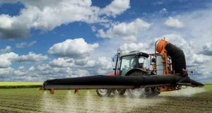 5 Reasons Monsanto Roundup Needs to be Banned Forever | Third Monk image 3