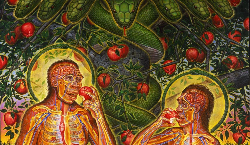 Properly Attune Your Body & Mind Before Using Psychedelic Plant Medicines | Third Monk image 1