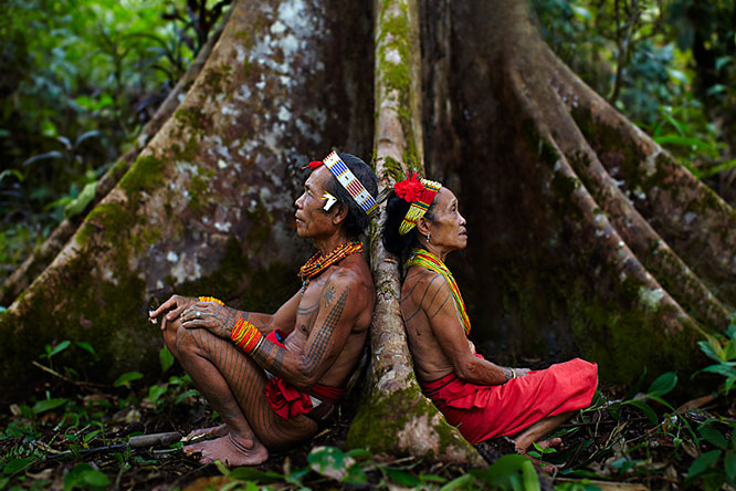 Ayahuasca Is Helping Western Minds Align with the Earth's Vibrations | Third Monk image 1
